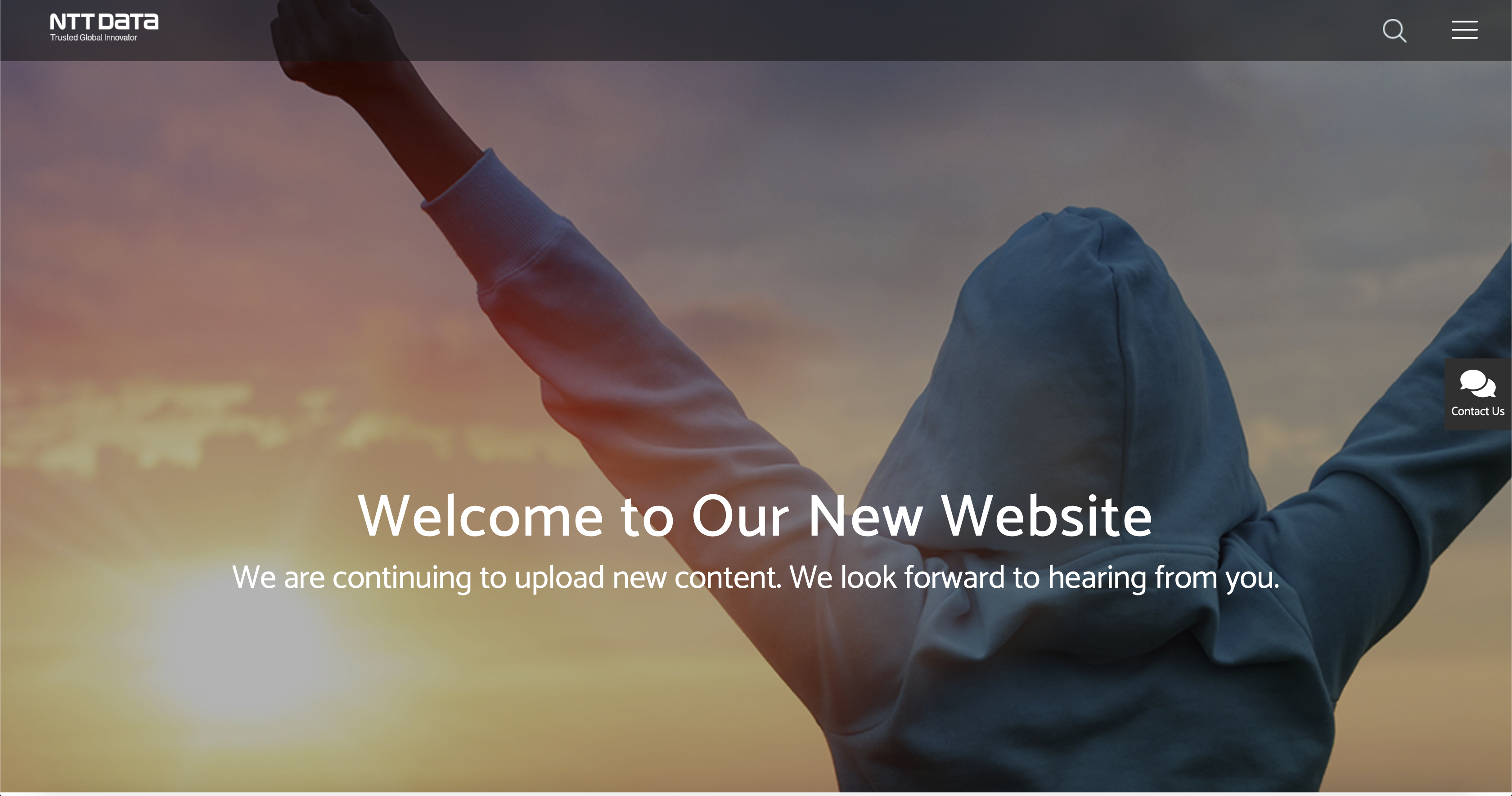 NTT DATA Business Solutions website India screenshot homepage